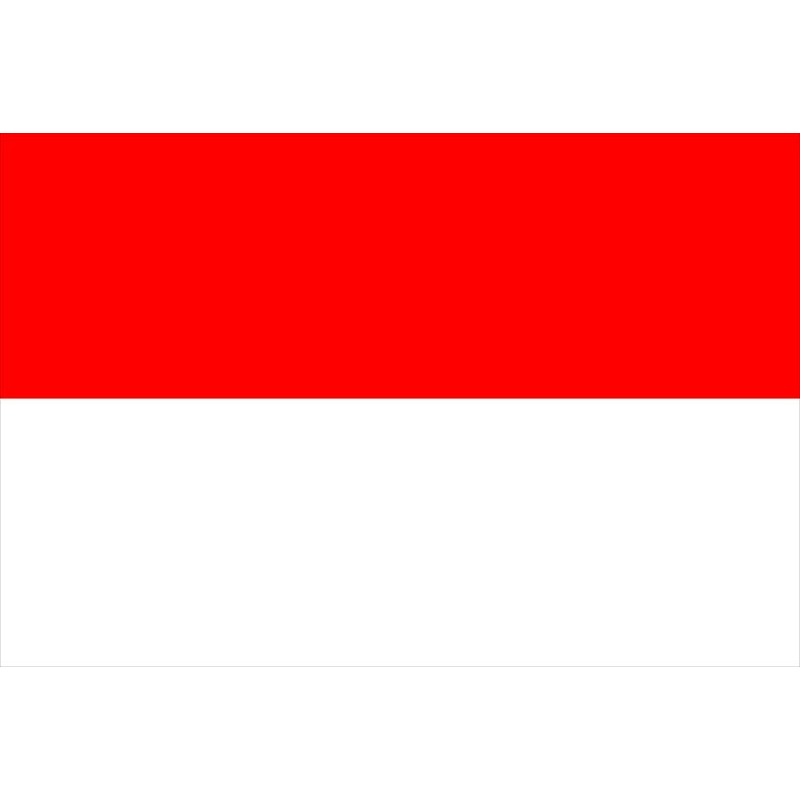 Bandiera Monaco 20x30